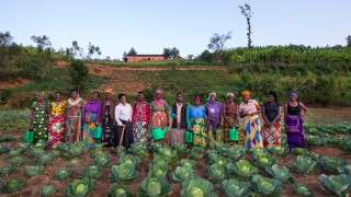 Programme participants on a cabbage farm_AWright_RW