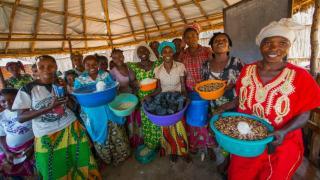 Programme participants in the Democratic Republic of Congo