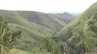 DRC Landscape