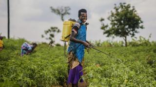 Women for Women International - Rwanda programme participants work on their cooperative farm. Photo: Serrah Galos