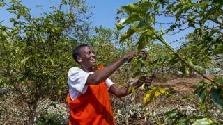 Women for Women International - Rwanda programme participant.* Photo: Alison Wright