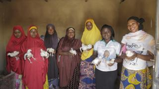 Women for Women International-Nigeria programme participants are trained in poultry farming and learn how to establish and manage a cooperative business.Photo: Sefa Nkansa