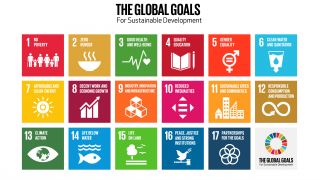 Responding to the release of the IDC Report on the UK's progress towards the SDGs